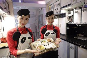 Sichuan Airlines - Pandia cesta